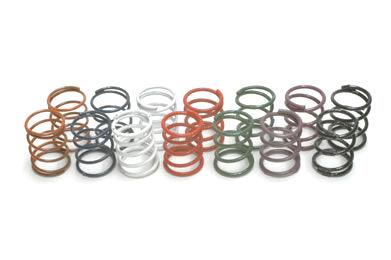 1/10th Front STD Springs
